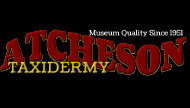 Atecheson Taxidermy